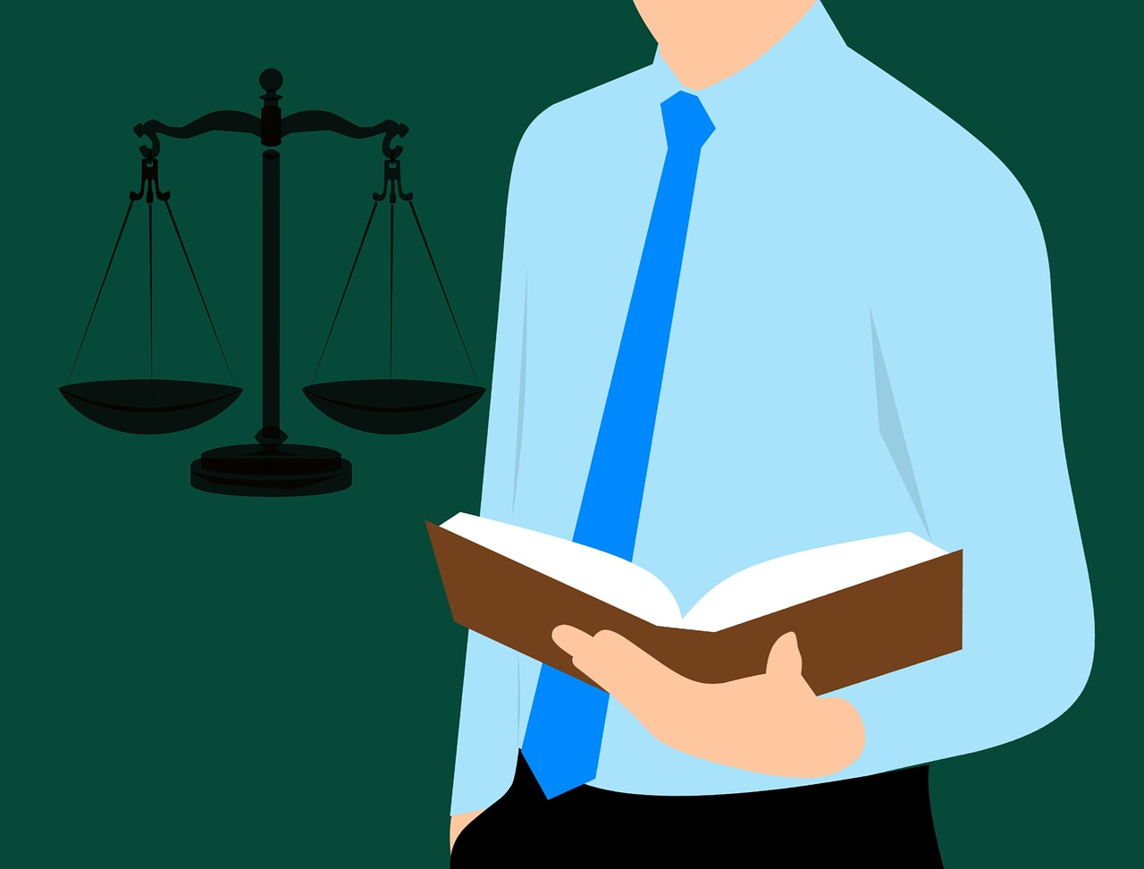 lawyer, guide book, justice
